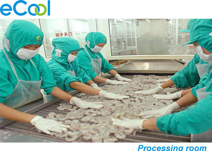 Custom Industrial Cold Storage 3000 Tons , Cold Room For Frozen Seafood